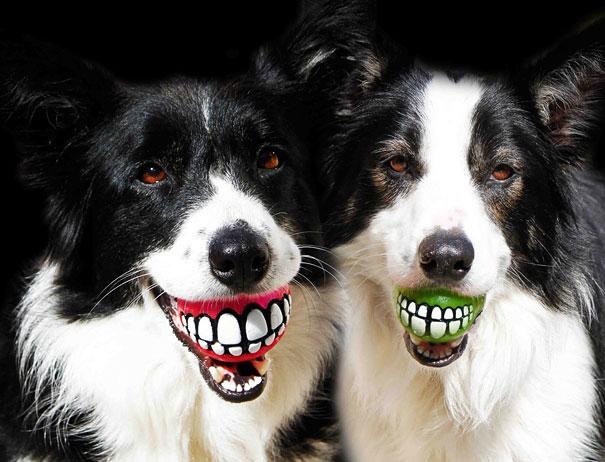 15 % отстъпка за почистване на зъбен камък